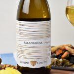 vino bianco falanghina bio
