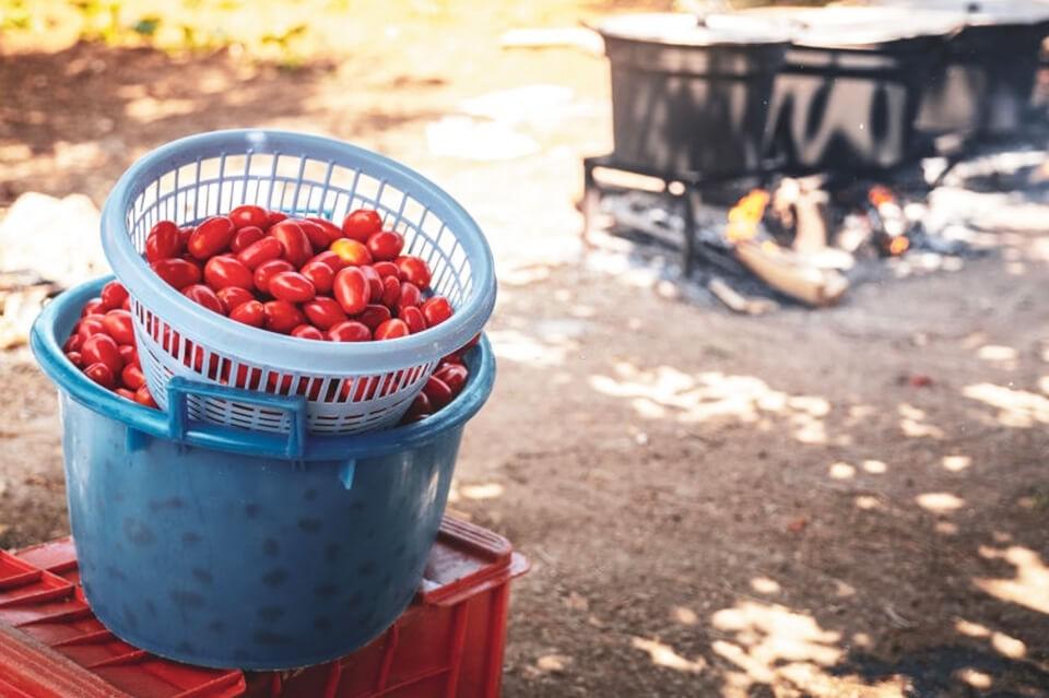 passata di pomodoro tradizionale